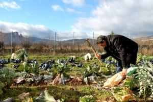 Pedro Guerra  en su explotación ecológica en el Valle del Iregua (La Rioja)