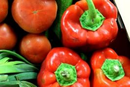 Verduras y hortalizas de La Plaza.